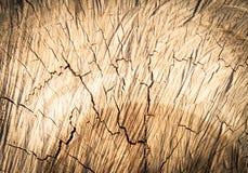 Drewniany tekstury tło, Drewniana tekstura/ Fotografia Royalty Free