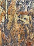 Drewniany textured, dykta jest powikłanym wzorem Zdjęcie Royalty Free