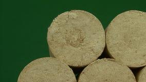 Drewniany trociny brykietuje prostującego, zielonego tło, Paliwa alternatywne, życiorys paliwo ilustracji