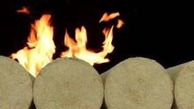 Drewniany trociny brykietuje prostuje, tła palenia ogień na śniegu w zimie Paliwa alternatywne, życiorys paliwo suwaka strzał zbiory wideo