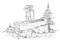 Drewniany waterhole Zdjęcie Royalty Free