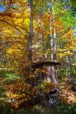 Drewniany WC Zdjęcia Stock