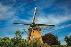 Drewniany wiatraczek, obfitolistni krzaki i pogodny niebieskie niebo przy Weesp, Zdjęcie Stock