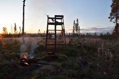 Drewniany wierza używać dla łosia amerykańskiego polowania w ranku Lite Obrazy Stock