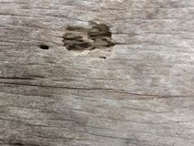 Drewniany wklęśnięcie Zdjęcia Stock