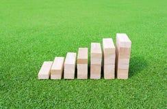 Drewniany wykres na zielonym polu Obrazy Royalty Free