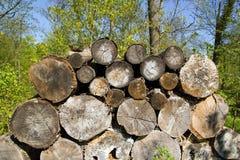 Drewniany zapas, schronienie dla pomocniczych insektów Zdjęcie Stock