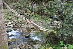 Drewniany zawieszenie most w górach obrazy royalty free