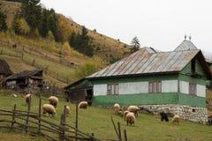 Drewniany zielony dom Zdjęcie Stock
