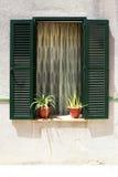 Drewniany zielony okno Obrazy Royalty Free