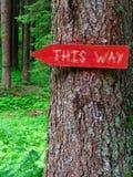 Drewniany znak ten sposobu sposób w lesie obraz stock