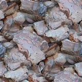 Drewnianych czerepów tekstury stary korowaty bezszwowy tło Obraz Stock