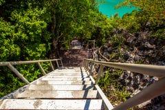Drewnianych schodków pobliska zielona laguna Fotografia Stock
