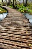 drewnianym mostem nad rzeka Obrazy Royalty Free