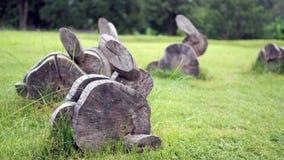 Drewno żyłuje pragnący kształt Królik zrobi drewno na trawie obraz royalty free