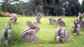 Drewno żyłuje pragnący kształt Królik zrobi drewno na trawie zdjęcia stock