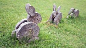 Drewno żyłuje pragnący kształt Królik zrobi drewno na trawie obrazy royalty free
