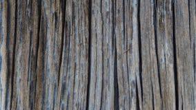 Drewno adra Fotografia Stock
