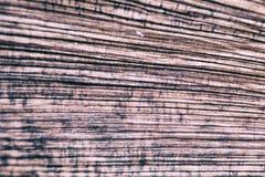 Drewno adra obrazy stock