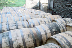 drewno barrel Obraz Royalty Free