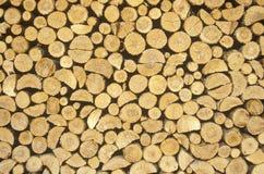 Drewno ciący dla zimy Obraz Stock