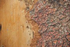 Drewno deska Obraz Stock