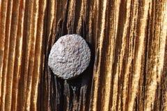 drewno do paznokci Zdjęcie Stock