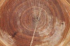 Drewno dzwoni tekstury tło Obrazy Royalty Free