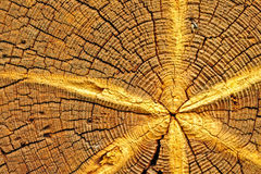 Drewno gwiazda Zdjęcie Royalty Free