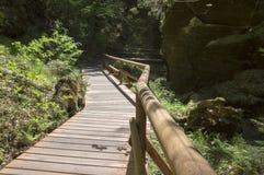 Drewno i skała krajobraz w czechu Szwajcaria, Kammintz George skalisty wąwóz, sasa Szwajcaria park narodowy zdjęcia stock