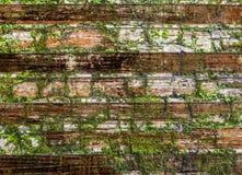 Drewno jak tekstura z naturalnymi wzorami obrazy royalty free