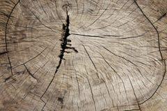 Drewno krakingowa deska Zdjęcie Stock