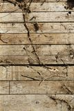 Drewno linii wzór Fotografia Royalty Free