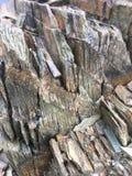 Drewno lub kamień? obraz stock