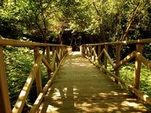 Drewno most Zdjęcia Royalty Free