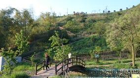 Drewno most na wzgórzu Obrazy Stock