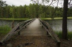 Drewno most nad jeziorem w natury rezerwaci Zdjęcia Stock