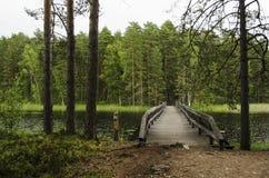 Drewno most nad jeziorem w natury rezerwaci Zdjęcie Stock