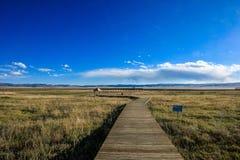 Drewno most przy Ruoergai obszarem trawiastym, Xiahe, Gannan, Chiny fotografia stock