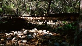 Drewno most w górze obrazy stock