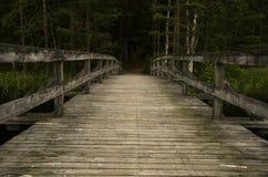 Drewno most w natury rezerwaci Fotografia Royalty Free