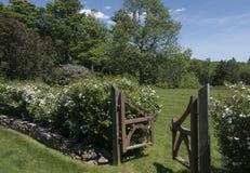 Drewno ogrodowa brama Fotografia Royalty Free