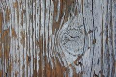 Drewno, oldwood, tło Obrazy Stock
