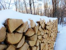 drewno opałowe objętych śnieg Fotografia Stock