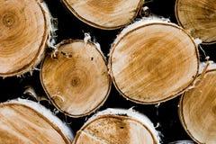 drewno opałowe Zdjęcie Royalty Free