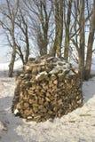drewno opałowe Obrazy Stock