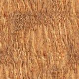 Drewno powierzchni zakończenie w górę bezszwowej tekstury Fotografia Stock
