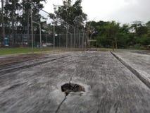 Drewno powierzchnia na parku Obrazy Stock