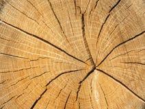 Drewno rżnięta tekstura Zdjęcia Stock