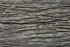 Drewno robić od cementu Zdjęcie Royalty Free